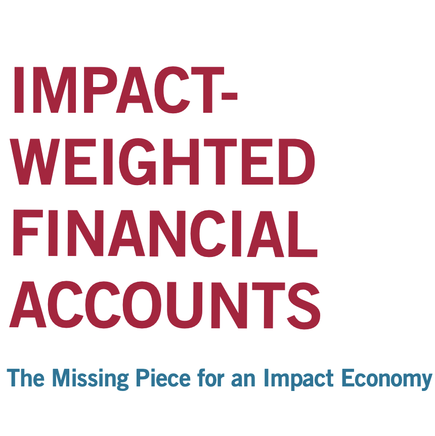 Impact Weighted Financial Accounts